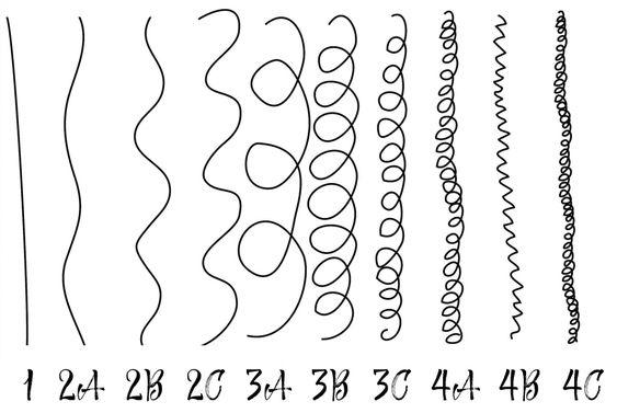 différents-types-de-cheveux-classification-andre-walker